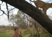 Hanging with baby lions in Zimbabwe